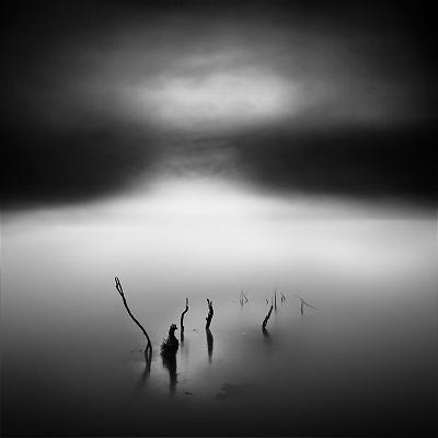 2514225_Tangoulis-Misty-Scapes-15-710x710