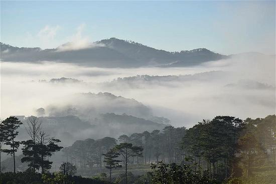 dalat10- photo UL